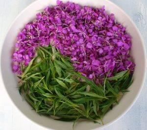 Собранные листья и цветки иван-чая