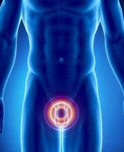 Заболевания органов мочеполовой системы