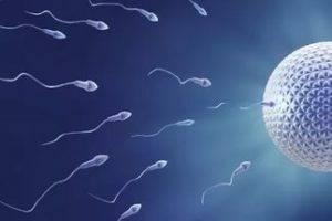 Астенозооспермия и беременность